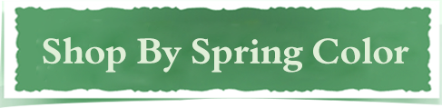 Shop By Spring Color