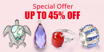Special Offer Up to 45% OFF